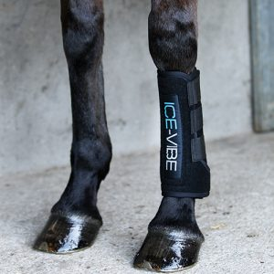 Black neoprene Horseware Ice Vibe Circulation Therapy Boot in use