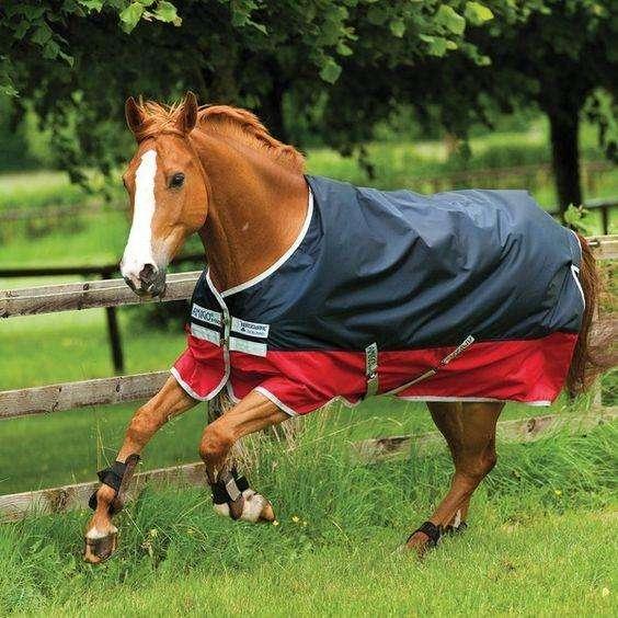 horseware-mio-turnout-medium-wla-navyred-ka1551-12030134-0-1488544708000