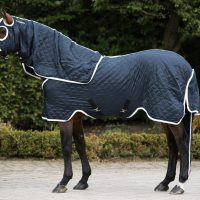 Side view of a horse wearing a navy/white quilted show rug