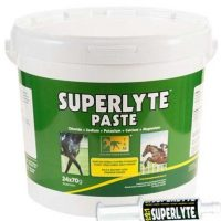 A tub of Superlyte Paste nutritional feed supplement