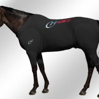 Hidez Equine Travel and Recovery Suit For Horses