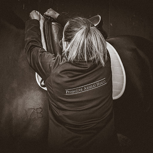 Sepia photo of Bianca fitting a Husk Breathe Saddle pad to a horse