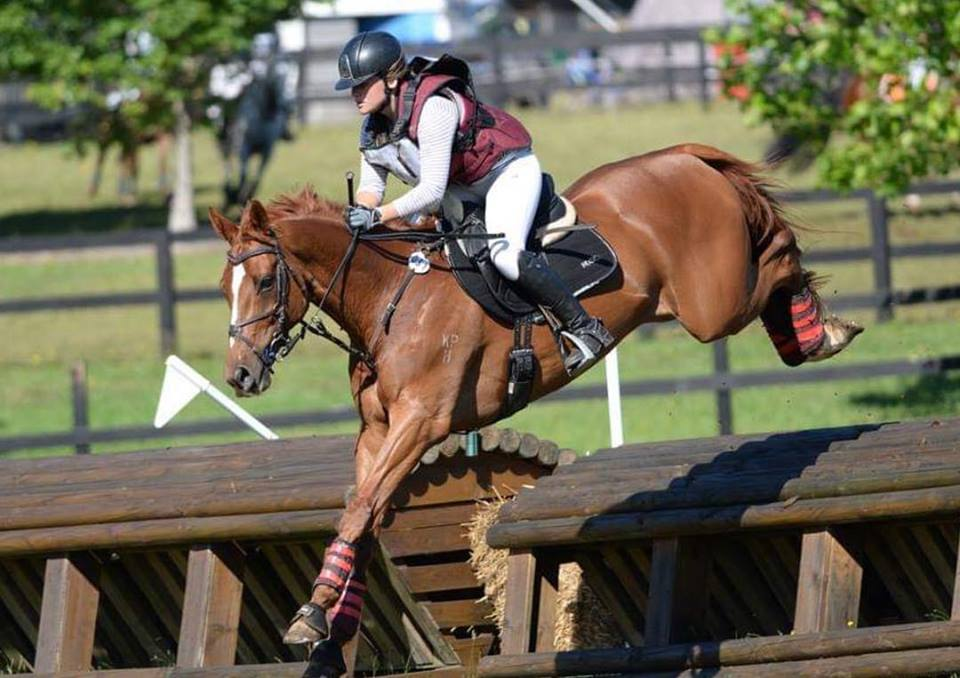 Brooke Searle and horse jumping
