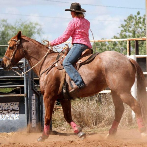 Sponsored Rodeo Rider Sarah Hoare